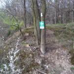 Ein Rettungspunkt am Waldrand