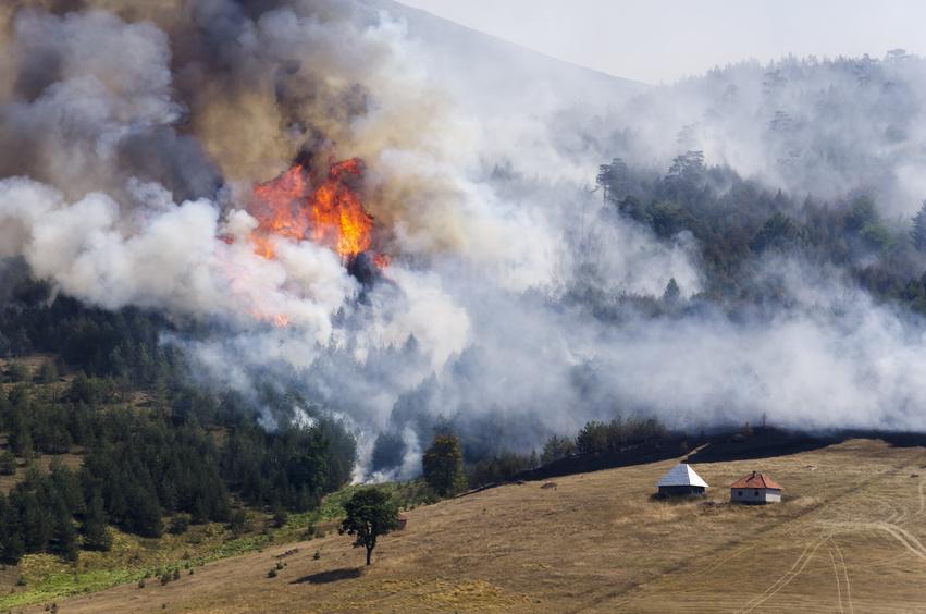 Waldbrände stellen hohe Anforderungen an Mensch und Material © photo4luck - Fotolia.com
